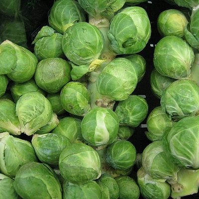Brussels Sprouts Image1